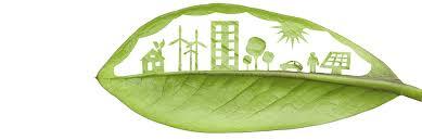 Manifiesto por un Futuro Verde